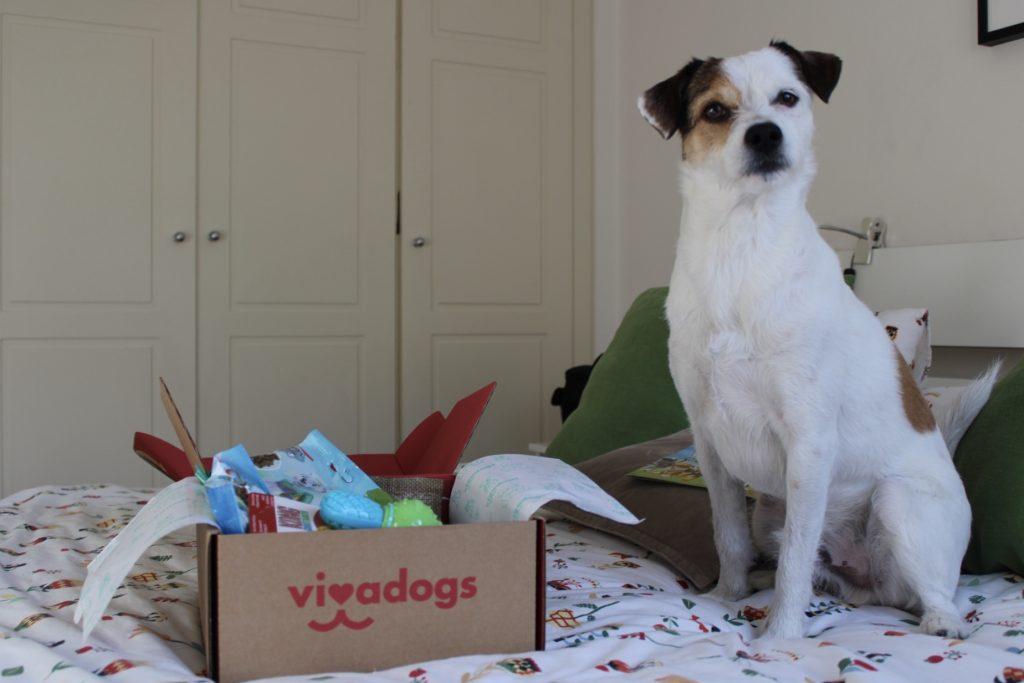 Vivadogs-opiniones