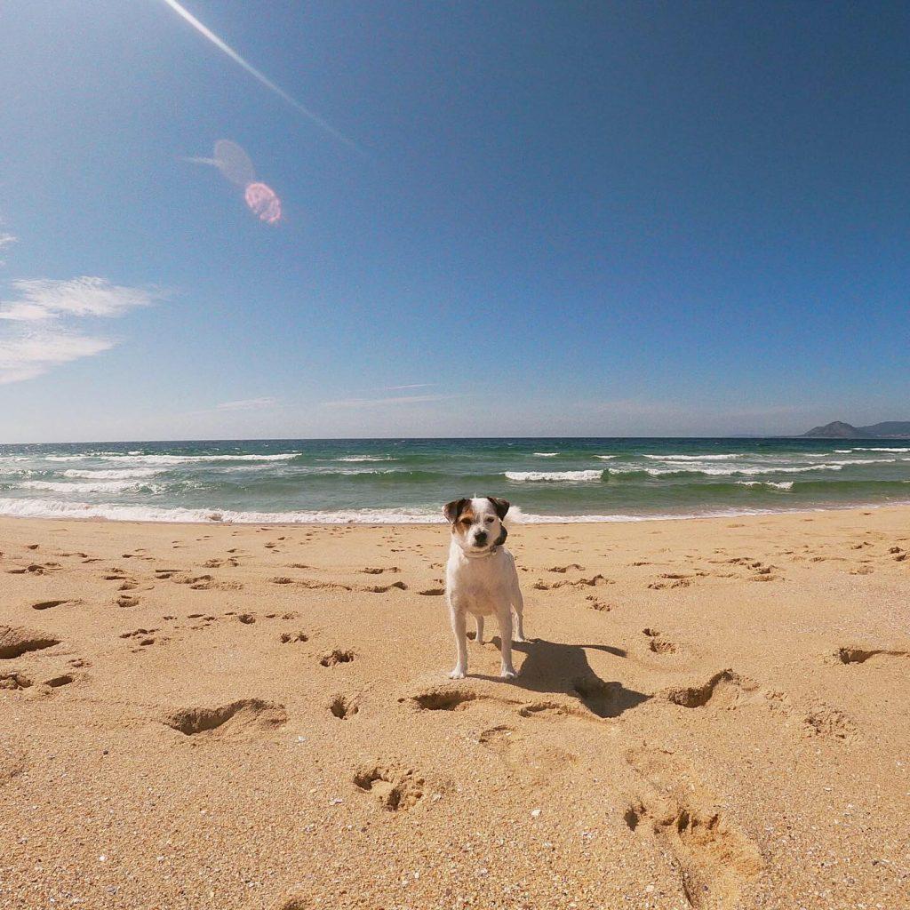 playa-canina-galicia