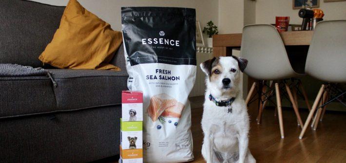 Essence de salmón y arándanos