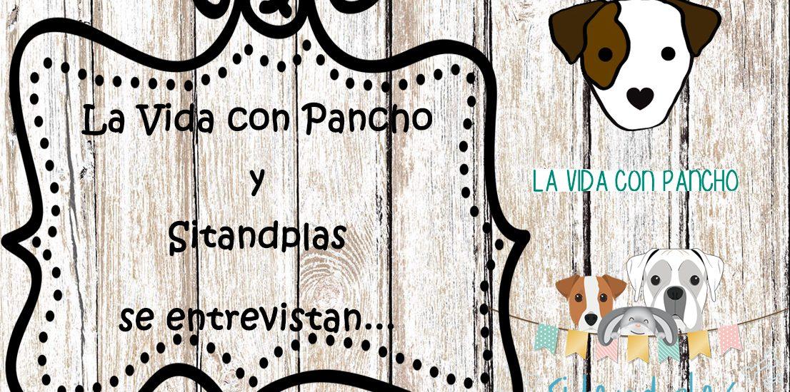 blog-de-perros