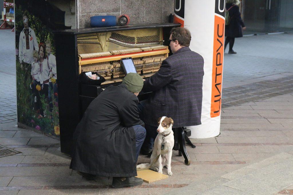 perros-y-música