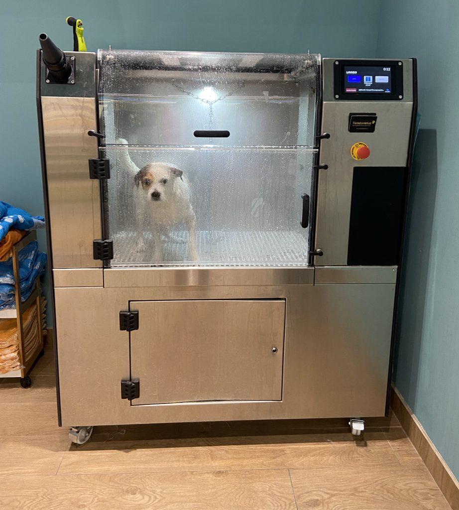 máquina-autolavado-perros