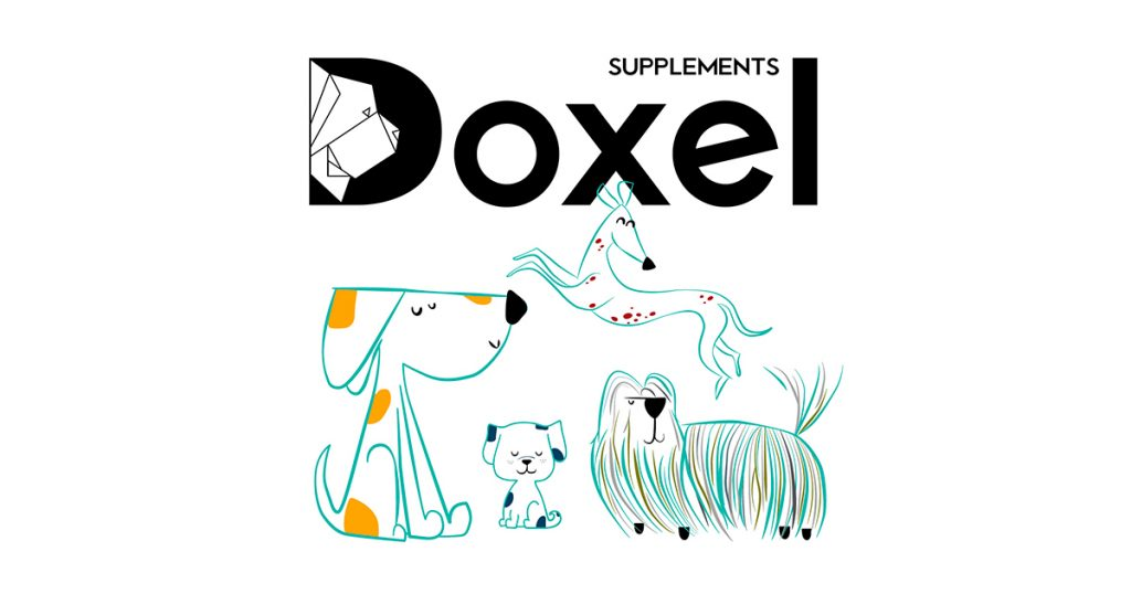 aceites-naturales-para-perros
