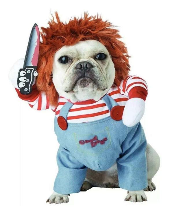 disfraz de chuky para perro