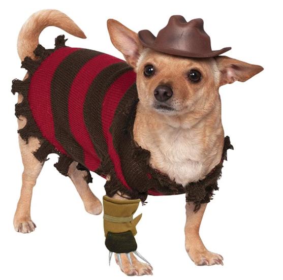 disfraz para perro halloween